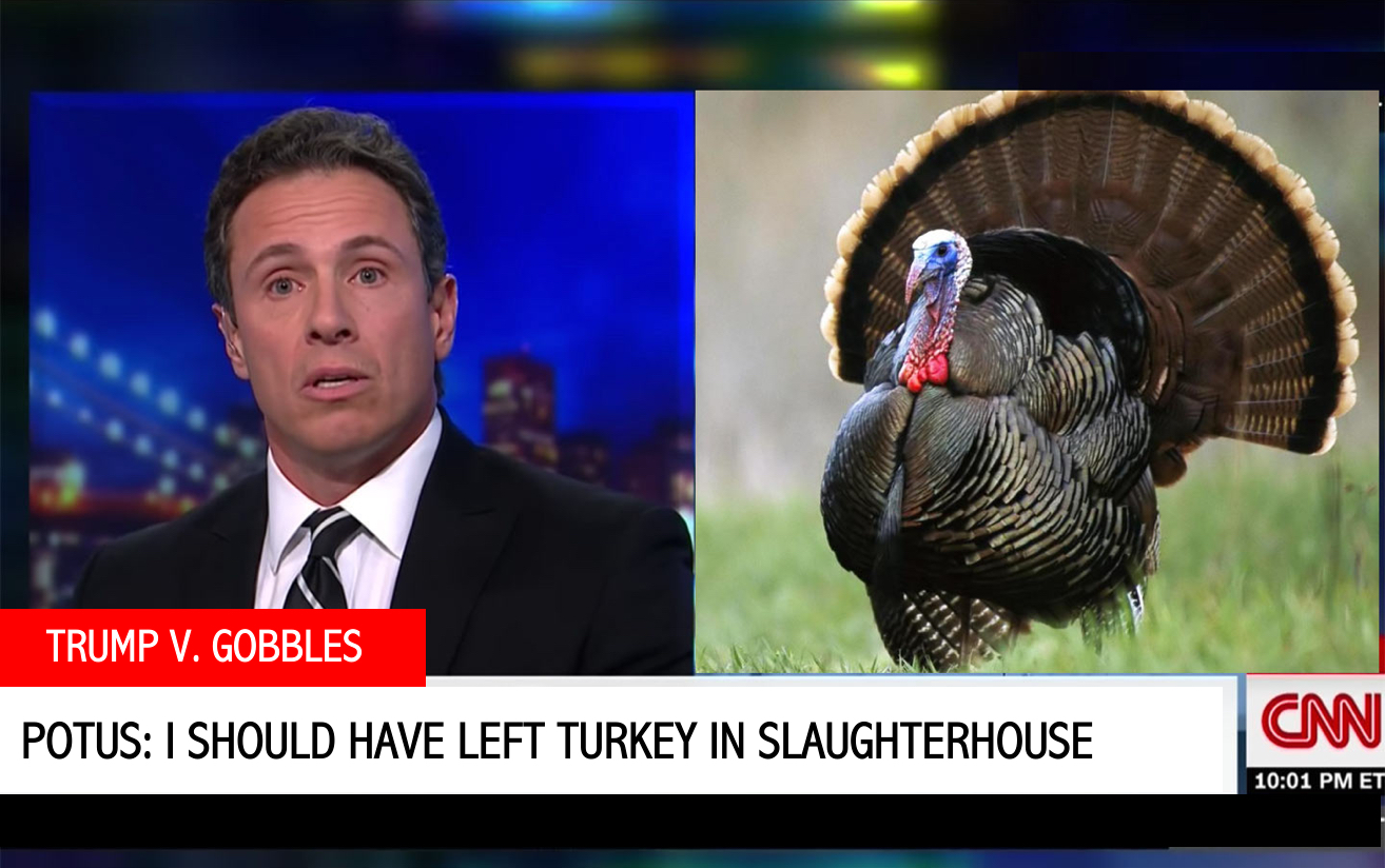 Mr. Gobbles' fiery interview with CNN's Chris Cuomo further escalated the elder turkey's feud with President Trump.